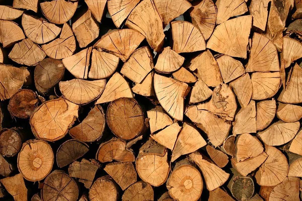 چوب گردو 1